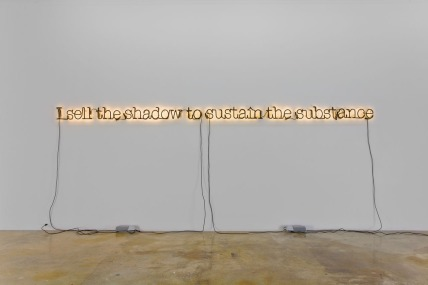 Untitled (I Sell the Shadow to Sustain the Substance), Neon, 2006